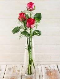Cam içerisinde 3 kırmızı gül  Polatlı çiçek satışı