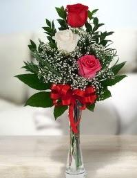 Camda 2 kırmızı 1 beyaz gül  ucuz çiçek gönder