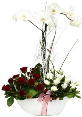 Tek dal beyaz orkide 8 beyaz 8 kırmızı gül  Polatlı çiçek satışı