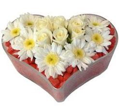 Kalp içerisinde 7 beyaz gül ve papatyalar  Polatlı internetten çiçek satışı