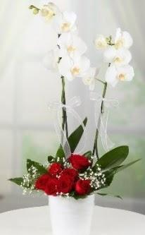 2 dallı beyaz orkide 7 adet kırmızı gül  14 şubat sevgililer günü çiçek