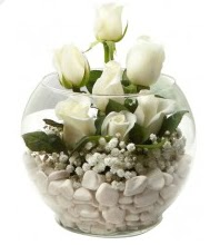 11 adet beyaz gül cam fanus çiçeği  Polatlıya çiçek çiçek mağazası , çiçekçi adresleri