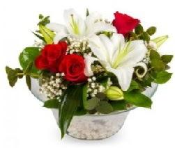 Cam içerisinde 2 kandil kazablanka 5 gül  internetten çiçek siparişi