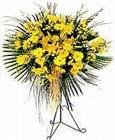 Polatlı yurtiçi ve yurtdışı çiçek siparişi  Sari kazablanka Ferforje