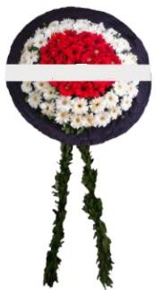 mozele çiçeği  Polatlı hediye sevgilime hediye çiçek