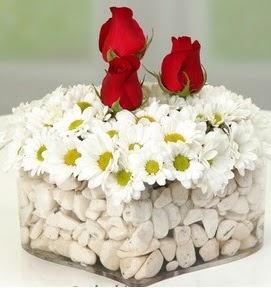 Mika kalpte papatyalar ve 3 gül  Polatlıya çiçek Ankara çiçekçi telefonları