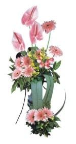 Polatlıda çiçekçi güvenli kaliteli hızlı çiçek  Pembe Antoryum Harikalar Rüyasi