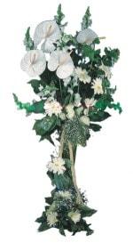 Polatlıya çiçek çiçek mağazası , çiçekçi adresleri  antoryumlarin büyüsü özel