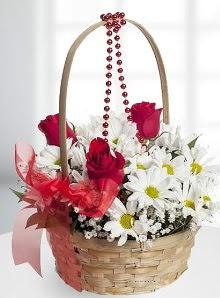 sepette 3 gül ve krizantem çiçekleri  Polatlı çiçek satışı