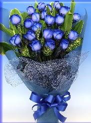 19 adet eşsiz mavi gül buketi  Polatlı uluslararası çiçek gönderme
