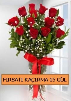 15 İthal kırmızı gül büyük başlı orjinal çiçek siparişi sitesi