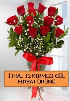 İthal kırmızı 12 adet kaliteli gül  ucuz çiçek gönder