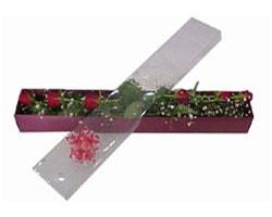 Polatlı anneler günü çiçek yolla   6 adet kirmizi gül kutu içinde