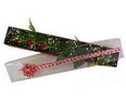 Polatlı Ankara hediye çiçek yolla  3 adet gül.kutu yaldizlidir.