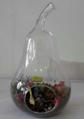 Armut orta boy cam terrarium tanzim  Polatlıya çiçek Ankara çiçekçi telefonları