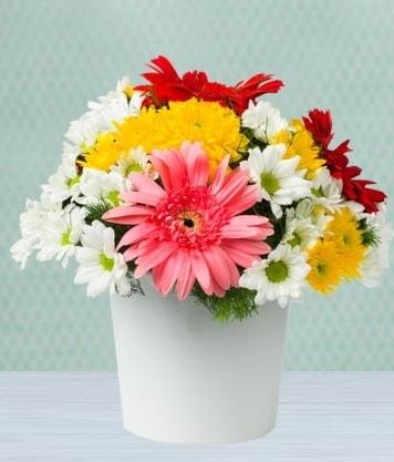 Seramik Vazoda Gelbera ve Papatya  Polatlıda çiçek firması çiçek gönderme