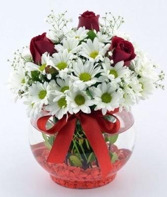 Fanusta 3 Gül ve Papatya  Polatlı internetten çiçek satışı
