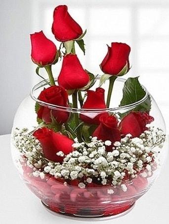 Kırmızı Mutluluk fanusta 9 kırmızı gül çiçek siparişi sitesi