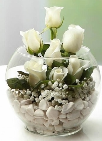 Beyaz Mutluluk 9 beyaz gül fanusta çiçek siparişi sitesi