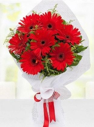 Kırmızı Gelbera Buketi  internetten çiçek siparişi