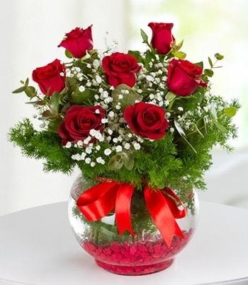 fanus Vazoda 7 Gül  Polatlı Ankara çiçek , çiçekçi , çiçekçilik