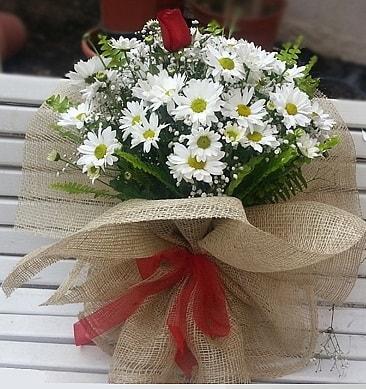 Papatya 1 adet kırmızı gül buketi  Polatlıdaki çiçekçiler