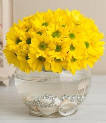 Fanusta Sarı Papatya çiçek siparişi sitesi