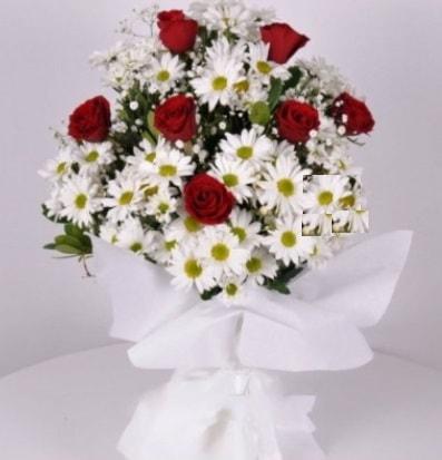 7 adet kırmızı gül ve papatyalar krizantem  Polatlı internetten çiçek satışı
