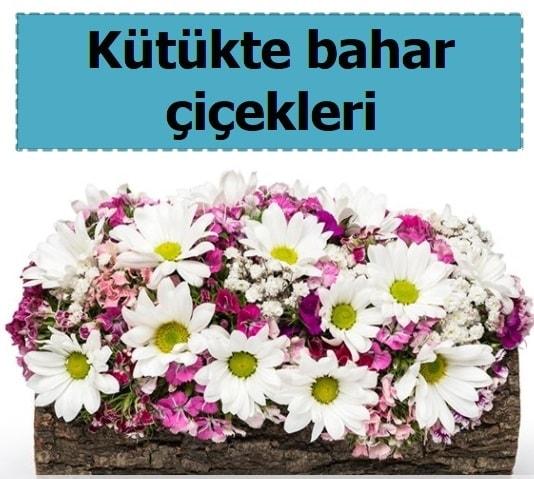 Kütük içerisinde kır çiçekleri  Polatlı Ankara çiçek , çiçekçi , çiçekçilik