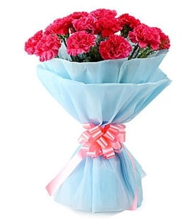 19 adet kırmızı karanfil buketi  Polatlı anneler günü çiçek yolla