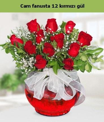 Cam içerisinde 12 adet kırmızı gül  Polatlı internetten çiçek satışı
