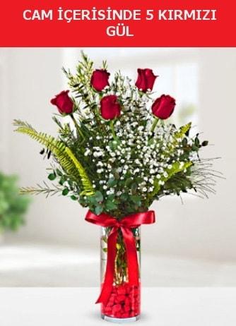 Cam içerisinde 5 adet kırmızı gül çiçek siparişi sitesi