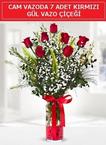 Cam vazoda 7 adet kırmızı gül çiçeği  Polatlı çiçek gönderme sitemiz güvenlidir