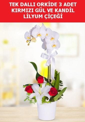 Tek dallı orkide 3 gül ve kandil lilyum  Ankara Polatlı çiçek yolla