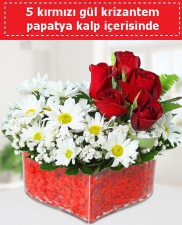 mika kalp içerisinde 5 kırmızı gül papatya  Polatlıda çiçek firması çiçek gönderme
