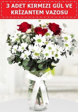 3 kırmızı gül ve camda krizantem çiçekleri  Polatlıda çiçek firması çiçek gönderme