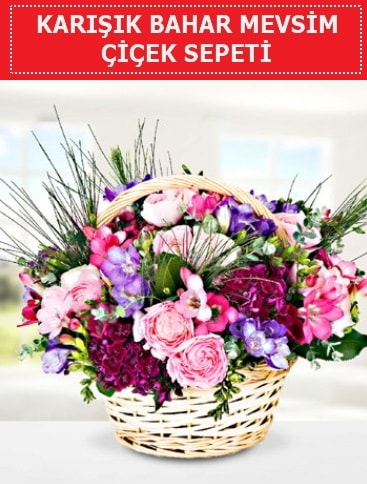 Karışık mevsim bahar çiçekleri  ucuz çiçek gönder