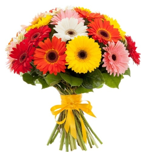 Gerbera demeti buketi  Polatlı çiçek satışı