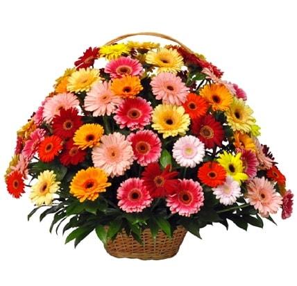 Karışık renkli büyük gerbera sepet aranjmanı  Polatlı çiçek gönderme sitemiz güvenlidir