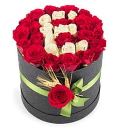 41 adet kırmızı beyaz gül harfli  Ankara Polatlı çiçek yolla