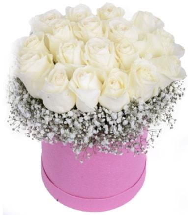 Renkli kutuda 19 adet beyaz gül  Polatlı internetten çiçek satışı