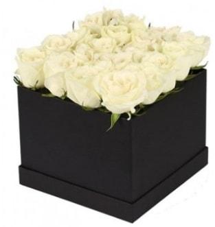 Kare kutuda 19 adet beyaz gül aranjmanı  Polatlıya çiçek Ankara çiçekçi telefonları