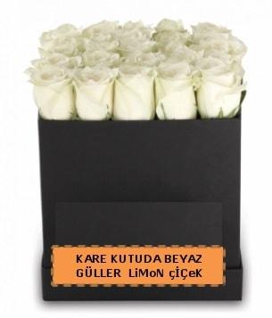 Kare kutuda 17 adet beyaz gül tanzimi çiçek siparişi sitesi