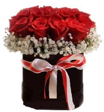 Siyah kutuda 23 adet kırmızı gül tanzimi  Polatlı çiçek gönderme sitemiz güvenlidir