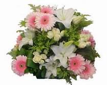 Ankara Polatlı Ankara kaliteli taze ve ucuz çiçekler  Gül kazablanka gerbera sepet çiçek modeli
