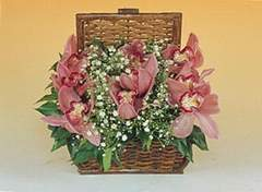 cicekciler , cicek siparisi  Sepet içerisinde orkide